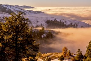 Inversion creeps up the mountain.